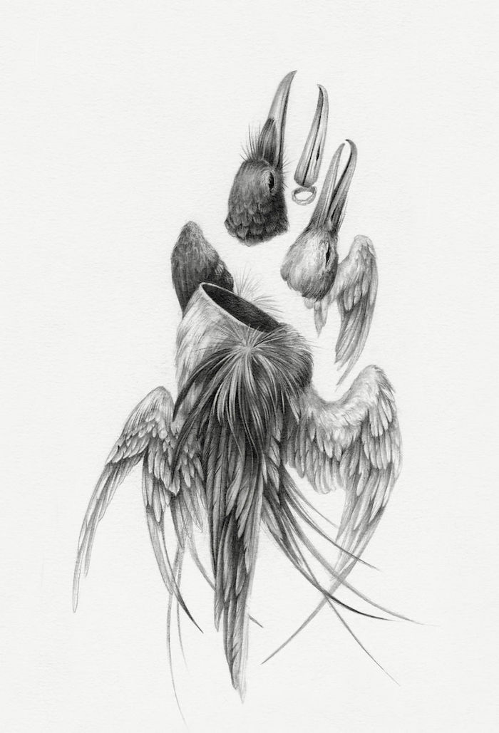 deconstruction d animal dessin fille de dos les plus beaux dessins tumblr faciles crayon noir sur papier blacn
