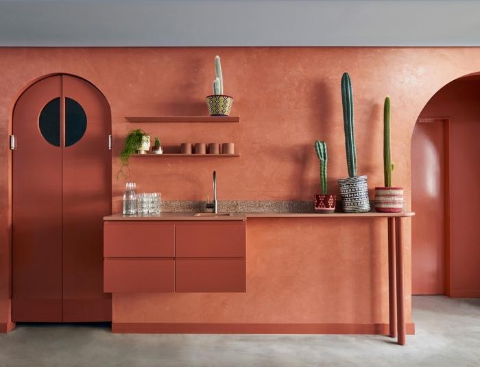design cuisine en longueur style exotique peinture mur terracotta meubles sans poignées crédence rangement mural étagère cactus intérieur
