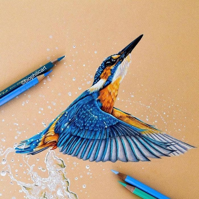 dessin facile a faire de fille tumblr dessin inspiratrice couleurs oiseau en vol pour les pros