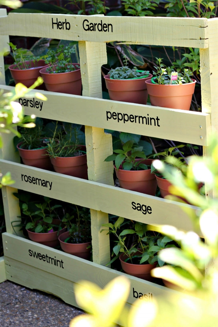 diy rangement pour plantes idée bricolage avec palettes recyclage peinture pour bois vert pâle mur végétal palette fait maison