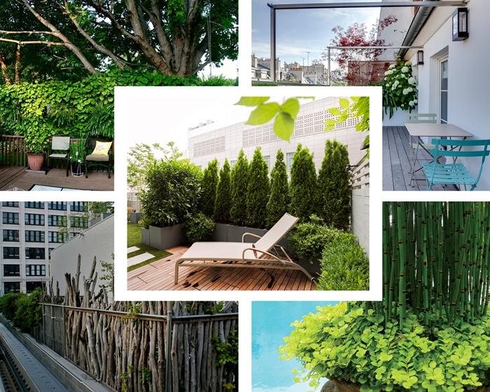 idee comment decorer son balcon ou terrasse cache vis a vis avec plantes mur vegetal plante brise vue balcon et jardin