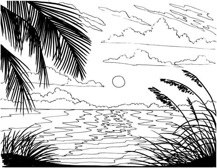 illustration blanc et noir paysage nature été vacances voyage repos bord de mer île exotique soleil nuages coloriage plage
