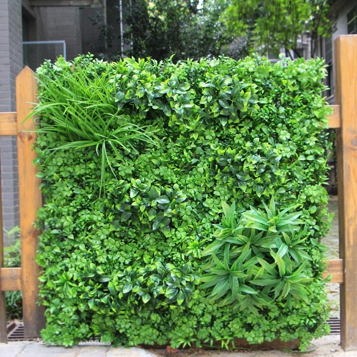 jardinage décoration clôture en bois avec plantes grimpantes espèces vivaces brise vue jardin facile verdure déco extérieure