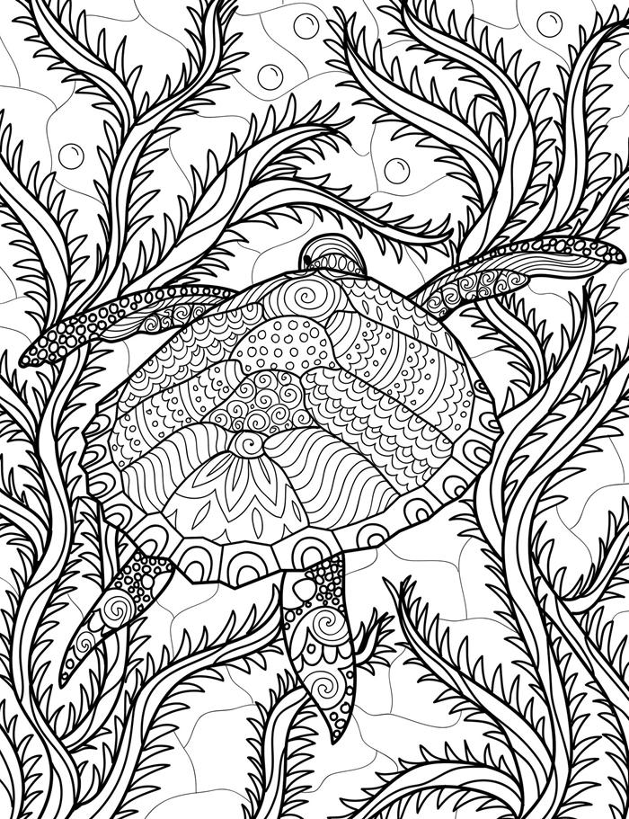 mandala dessin a colorier et a imprimer végétation océan mer vacances été aventure tortue marine plantes aquatiques