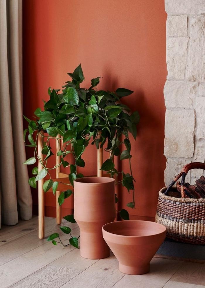 plante verte grimpante meuble bois design intérieur tendance peinture mur terracotta ânier tressé idée déco couloir style boho chic rideaux gris clair