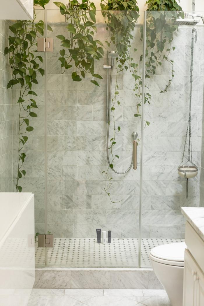 plantes muraux douche italienne murs marbre lavabo meuble