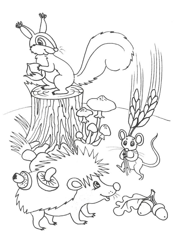 animaux de forêt nature automne saison légumes et fruits glands fleurs herbes tronc arbre champignons coloriage automne