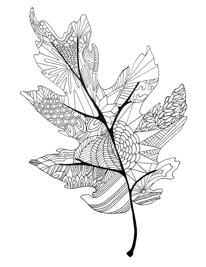 art page coloriage pour adultes motifs feuilles mandala détails dessin blanc et noir feuille d automne à colorier lignes