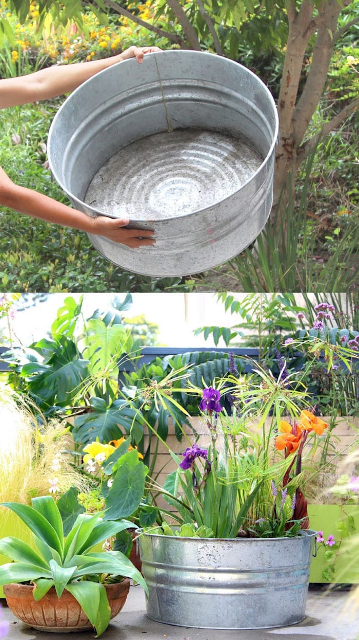 bassine en zinc pour creer un bassin de jardin hors sol simple en conteneur avec des plantes aquatiques