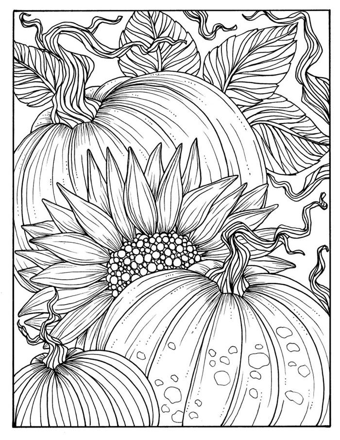 coloriage d automne pour adulte dessin blanc et noir à colorier dessin citrouilles d automne fleurs gros tournesol nature