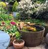 decoration bassin exterieur en bassine vintage avec quelques végétaux tulipes et autres plantes de jardin autour amenagement cour arriere