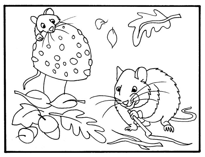 dessin de feuille d automne amitié animaux feuilles séchées glands souris champignons coloriage facile pour enfants