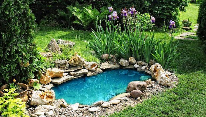 exemple de bassin enterré entouré de pierres de tailles variées avec vegetation autour au centre d in pelouse de jardin