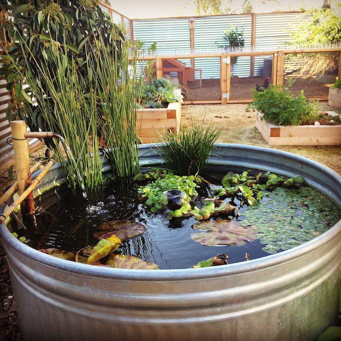 exemple de bassine en zinc avec des plantes quatiques variés et évier en bambou amenagement petit bassin hors sol
