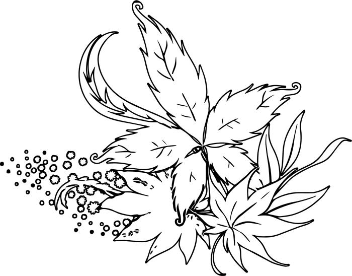 feuilles détails coloriage page simple dessin feuille d automne à colorier pour enfants et adultes anti stress thérapie