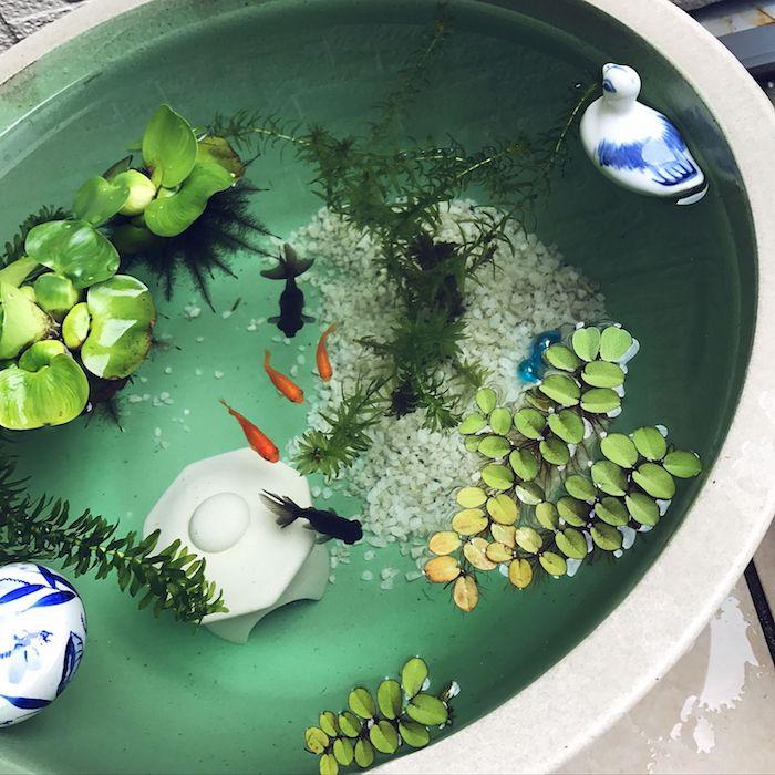 idee que mettre dans un bac a poisson avec gravier blanc végétaux poissons et figurines de canards