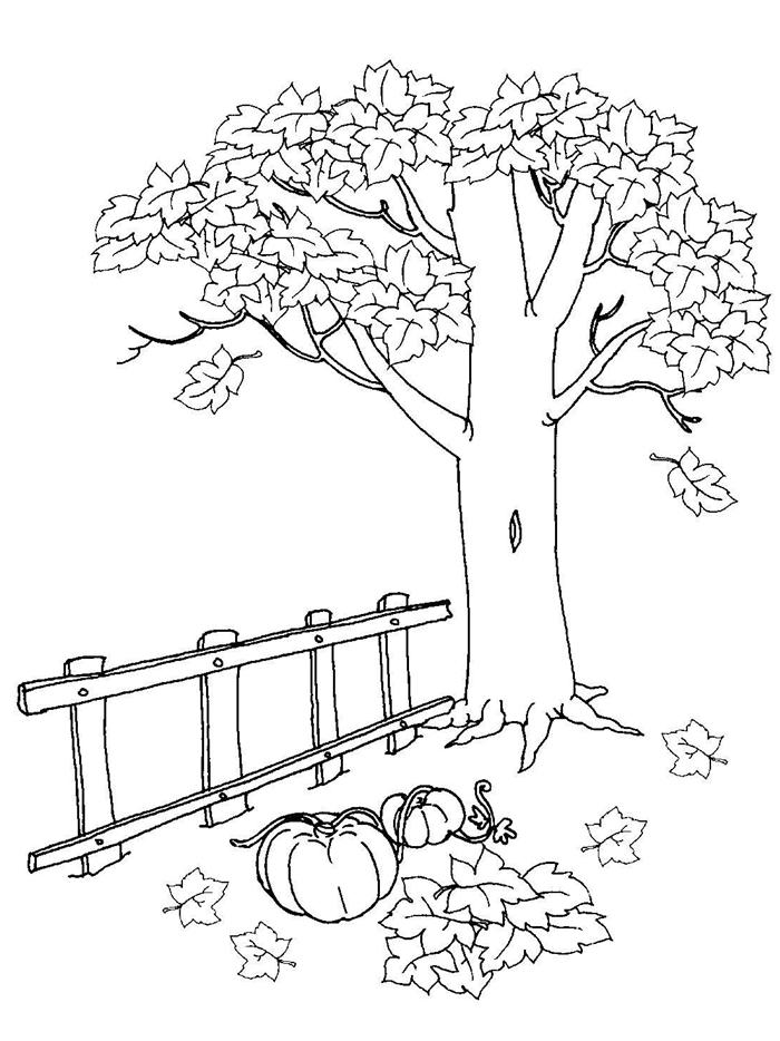 paysage nature coloriage facile pour petits occupation rigolo activité créative arbre d automne dessin blanc et noir feuilles citrouilles