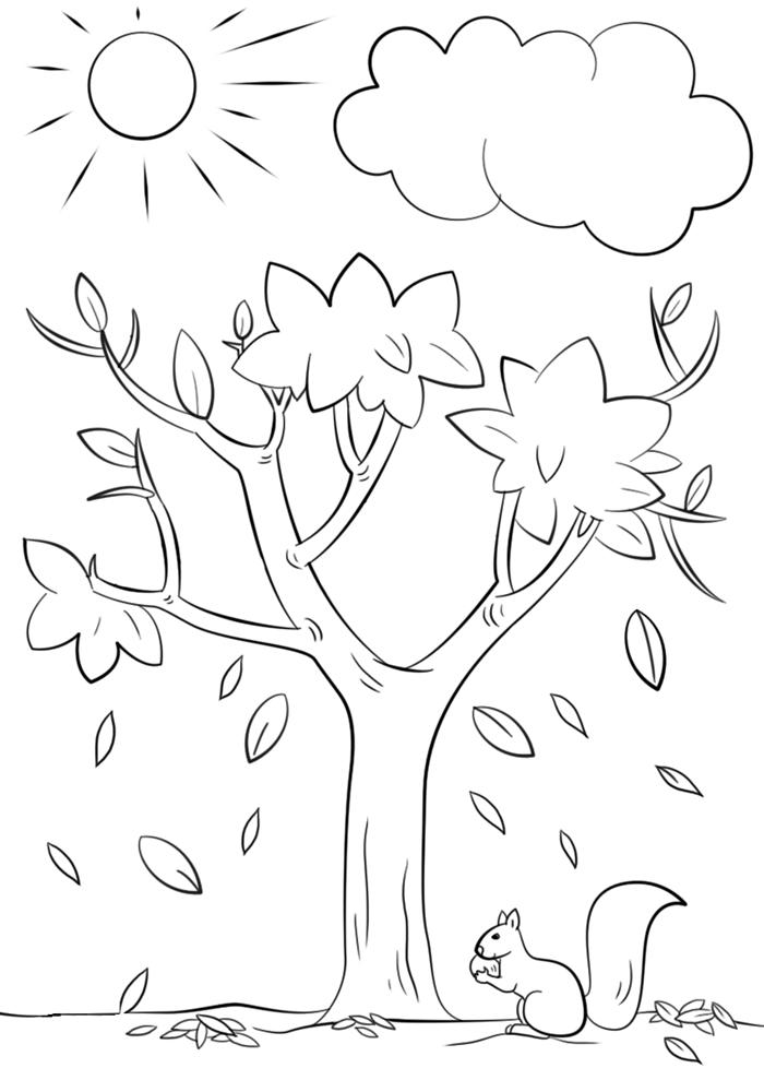soleil nuage ciel paysage nature animal forêt arbre d automne dessin facile à colorier activité enfant feuilles qui tombent écureuil
