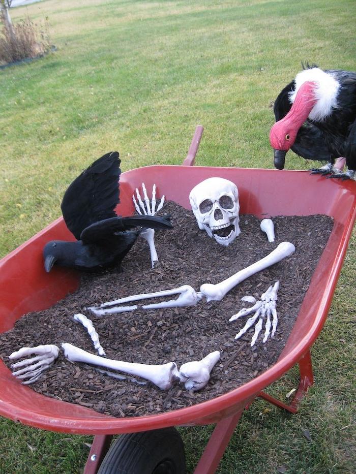 brouette de jardin avec terreau squelette corbeau artificiel deco halloween qui fair peur pour le jardin
