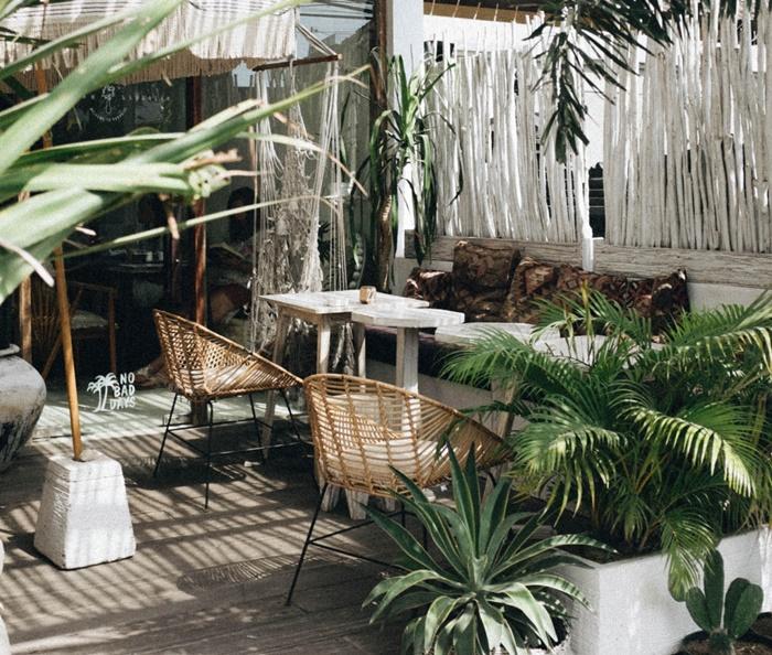 chaise rotin table blanche brise vue bambou decoration exterieur cour arriere palmier jardinage
