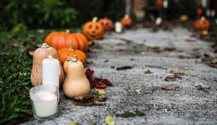 chemin de jardin bordure de jardin halloween en bougies et courges de taille variée déxoration halloween extérieur à fabriquer