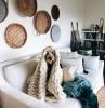 comment faire le salon plus confortable pour vois et pour le chien couleur de peinture pour salon moderne canapé blanc