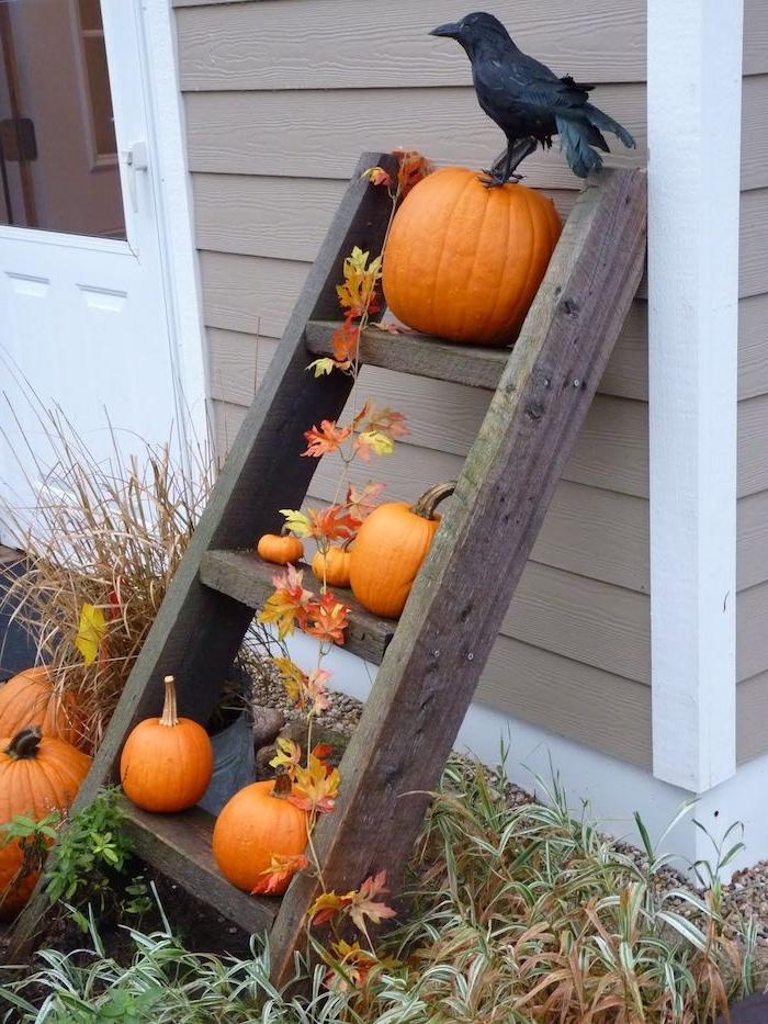 echelle decorative de bois brut avec guirlande de feuilles d automne citrouilles decoratives et corbeau artificiel deco halloween facile a faire pour la cour de maison