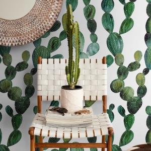 exemple de motif cactus mural dessin chaise tressée et pot de cactus pouf marron et blanc