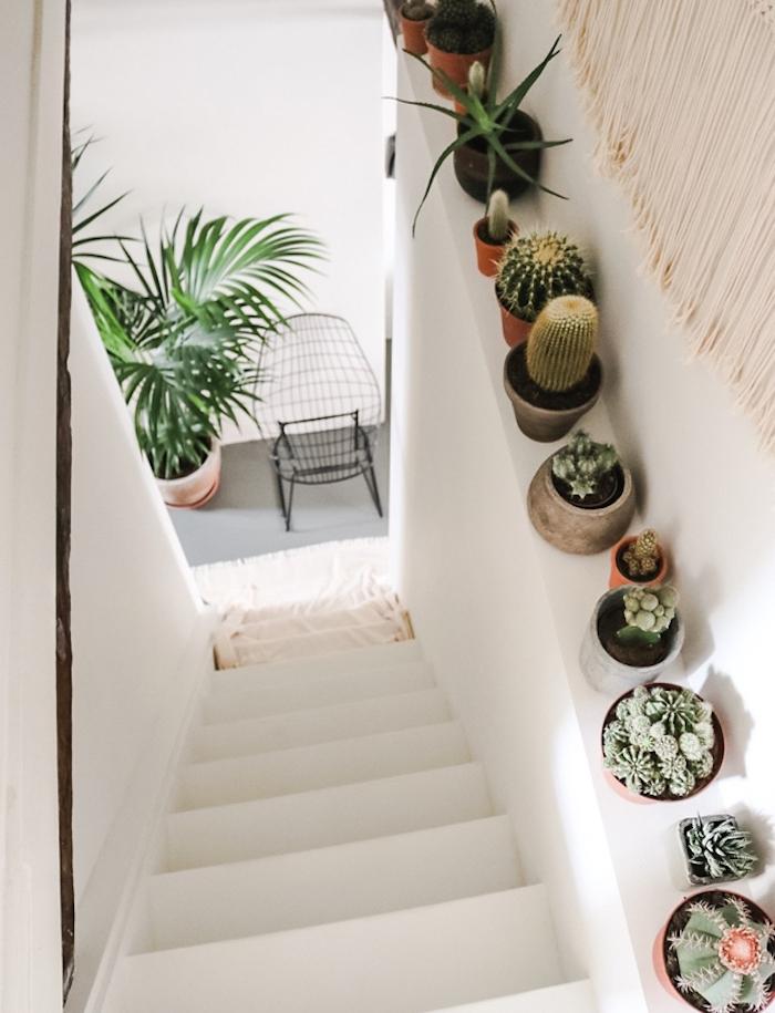 idee deco cage d escalier avec des pots cactus variés deco vegetale originale