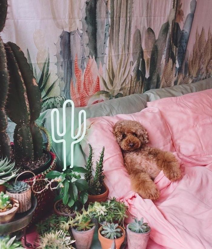 idee deco chambre cocooning pots de fleurs plantes succulentes cactus en pot lampe neon cactus et tapisserie cactus plante verte d intérieur decoration