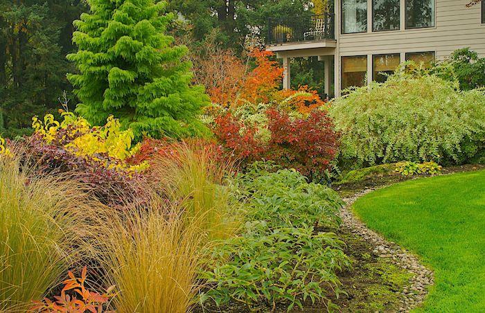palette des couleurs de plantes et des buissons dans le jardin comment faire