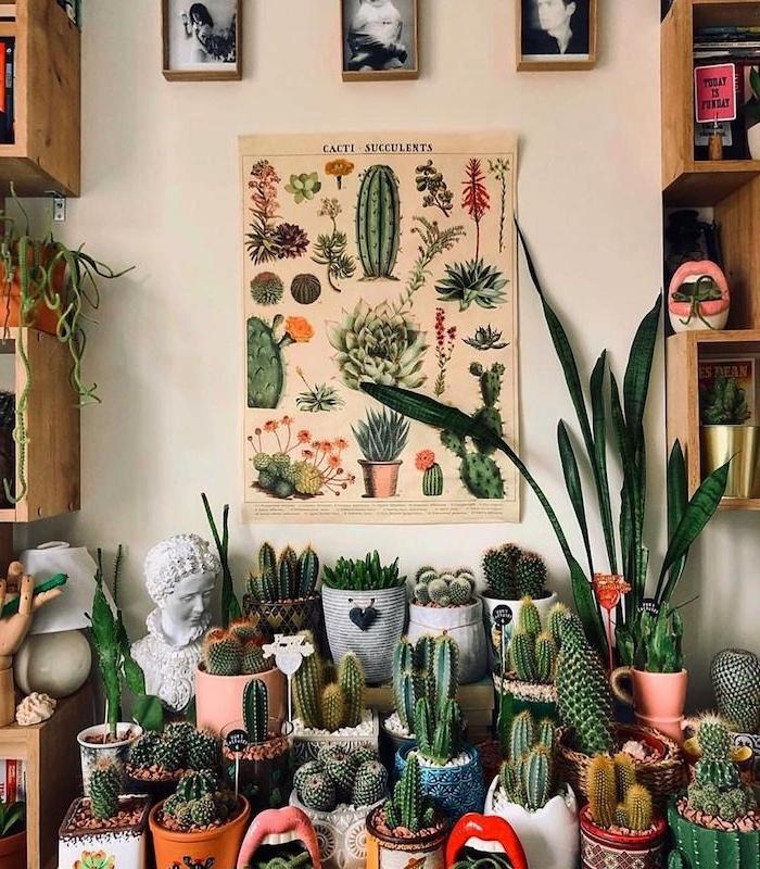 petit jardin de pots de cactus originux affiche murale cactus petite plante d intérieur verte exemple endemble deco vegetale