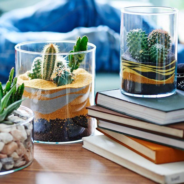 petits terrarums de terreau pour cactus galets sable coloré et mini cactus deco table basse exotique plante verte intérieur