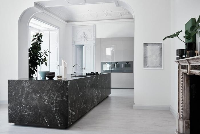 plan de travail marbre noir décoration cuisine ouverte en blanc et noir plante verte intérieur cheminée robinet inox
