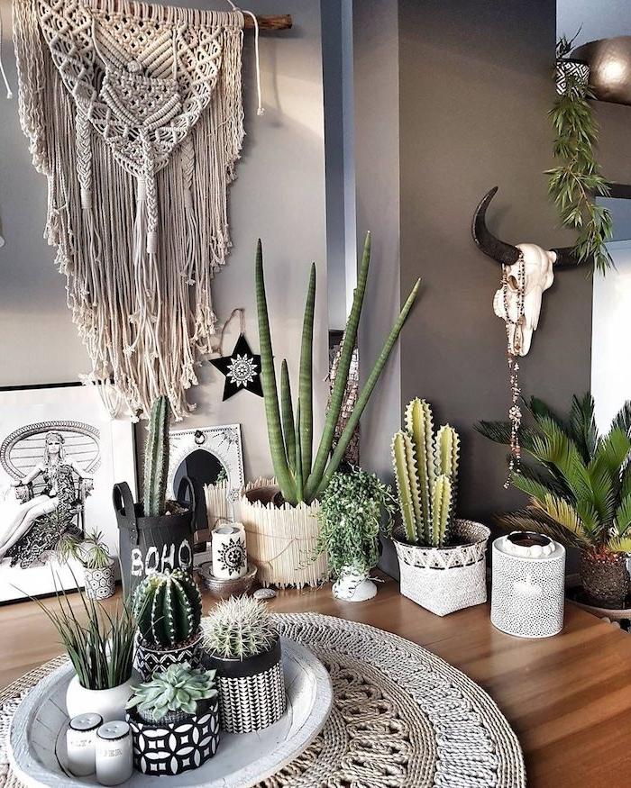 plantes grasses d intérieur de tailles variées avec des accents deco boheme macramé mural diy décoratif