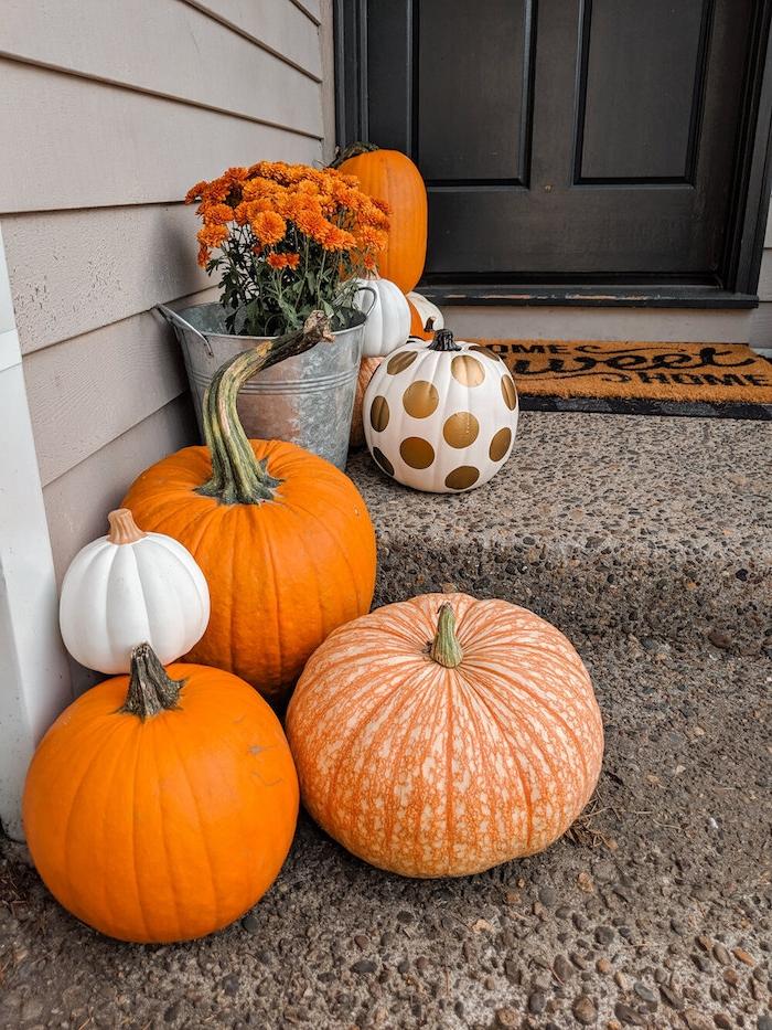 rangée de citrouilles décorées et naturelles et fleurs orange idée bordure entrée ddéco entrée deco halloween facile