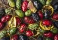 7 recettes d'entrée d'automne : faciles, économiques et hyper délicieuses