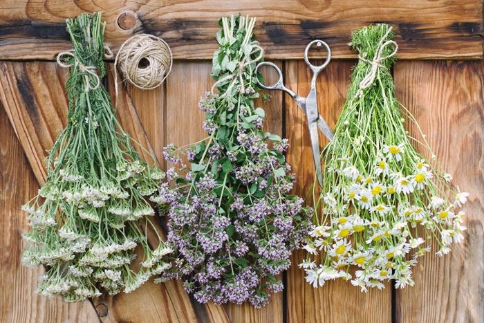 comment secher des fleurs methode ciseaux fil plantes especes sechage air libre decoration avec fleurs sechees