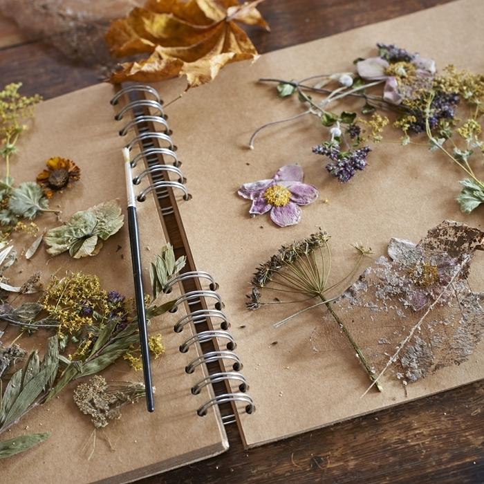 decoration avec fleurs sechees facile à faire technique sechage fleur facile journal papier pinceau colle plantes feuilles