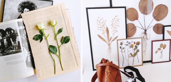 exemple herbier original a faire soi meme technique fleurs pressees page journal livre methode sechage plantes fleuries