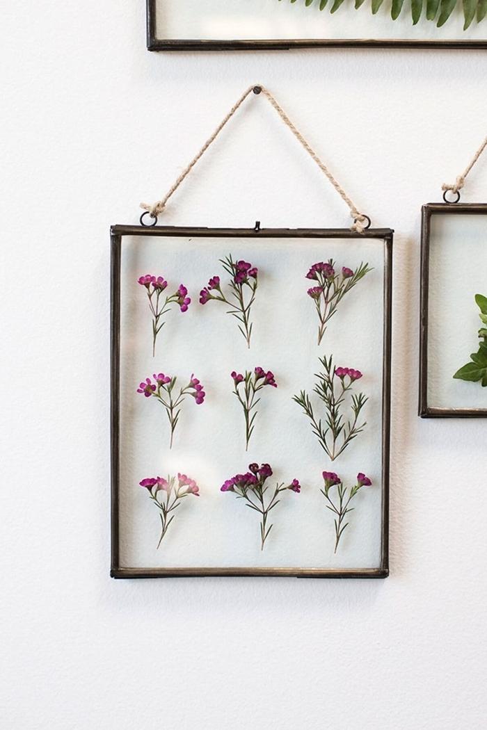 fleurs séchées déco murale activité manuelle facile diy cadre vide verre bouquet fleurs branches séchées