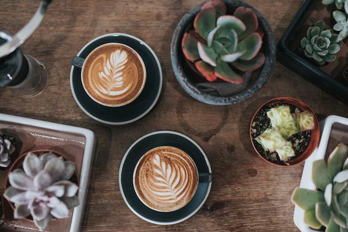 latte art des cafes avec des desins sur la mousse deux tasses sur une table en bois a cote des cactus