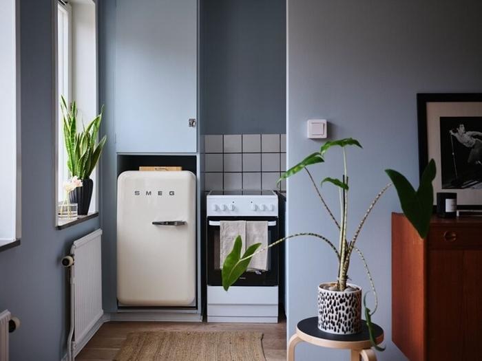 mini cuisine peinture murale bleu gris plantes vertes d intérieur pot fleur motifs animaliers commode marron
