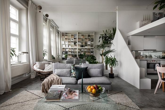 plantes vertes d intérieur tapis moelleux blanc aménagement cuisine studio blanc et gris canapé fauteuil coussins blancs