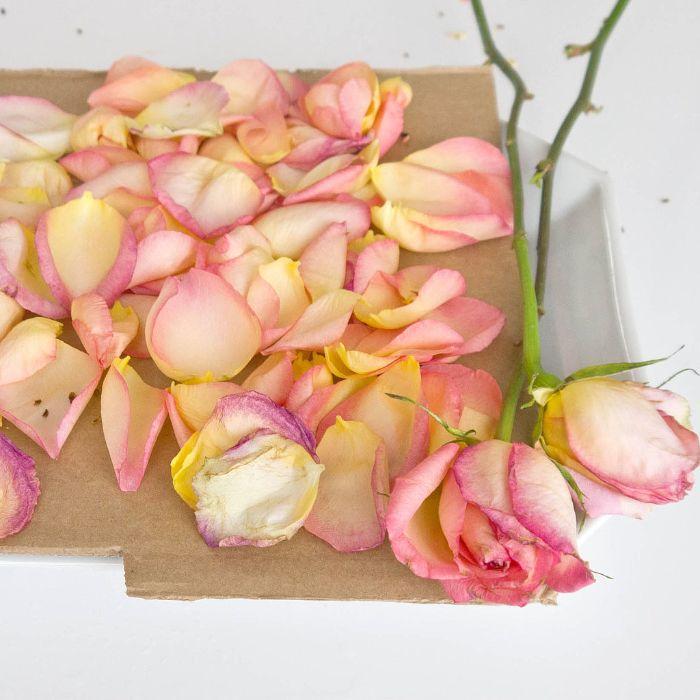que faire avec des petales de roses comment faire secher une rose chez soi à l air libre pour embaumer son interieur