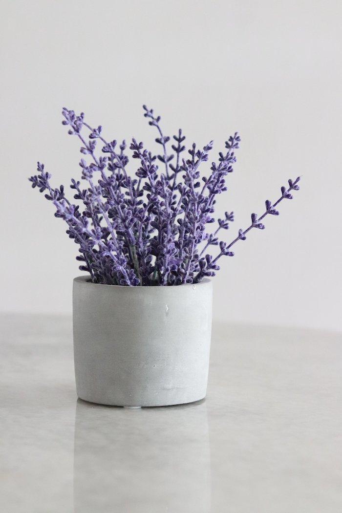 un pot a fleur ceramique au lavande sur le comptoir de la cuisine deco lavande