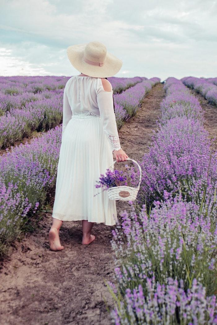 une femme dans les champs de lavande bricolage ave de la lavande robe blanche et grande chapeau