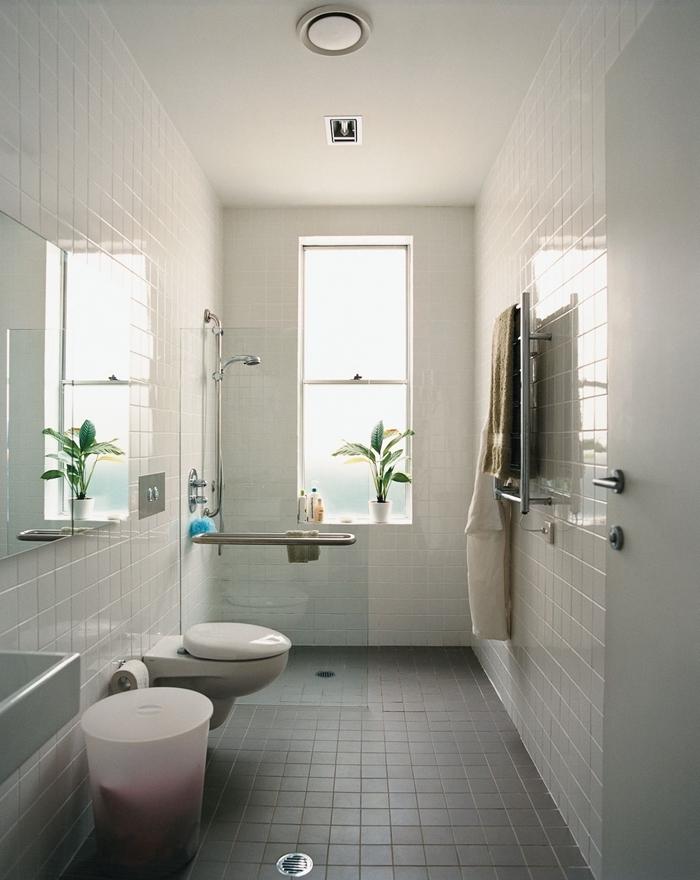 aménager petite salle de bain plante verte douche inox séche linge carrelage blanc cuvette wc suspendue
