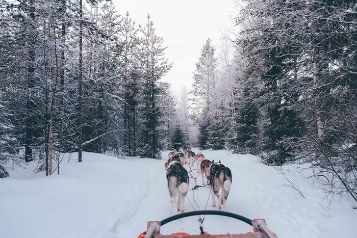 belle image paysage hiver nature montagne enneigee traineaux huskys laponie aventure photographie neige