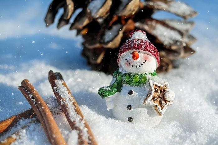 bonhomme de neige image hiver rayons de soleil pommes de pin bâton cannelle figurine noel déco